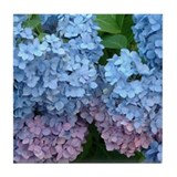 Hydrangea Tile Coaster