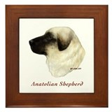 Anatolian Shepherd Framed Tile