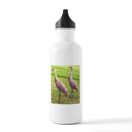 Sandhill Cranes Stainless Water Bottle 1.0L