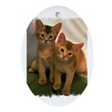 Adorable Kittens Oval Ornament