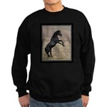 Desert Stallion Sweatshirt (dark)