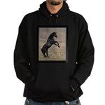 Desert Stallion Hoodie (dark)