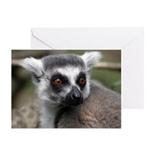 Lemur Greeting Cards (Pk of 10)
