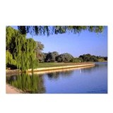 Willow Lake - Postcards (Package of 8)