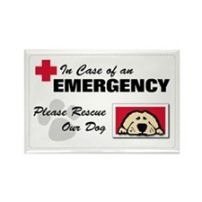 Please Rescue Dog Rectangle Magnet