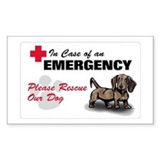 Save My Dachshund Rectangle Decal