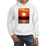 franklinsworld.com Hooded Sweatshirt