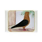 Gold Blackwing Archangel Rectangle Magnet (100 pac