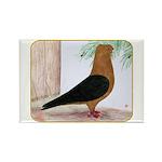 Gold Blackwing Archangel Rectangle Magnet (10 pack