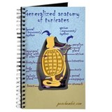 Sea squirt anatomy Journal