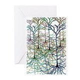 Brain Greeting Cards (10 Pack)
