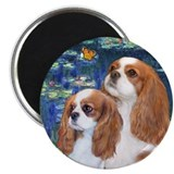Lilies #5-Two Cavaliers (BL) Magnet