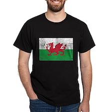 Wales Flag T-Shirt