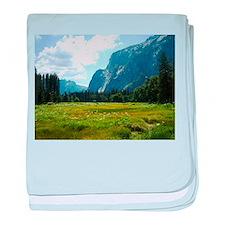 Yosemite Meadow baby blanket