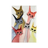 Eugene Stray Cats Magnet