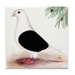 Saddle Homing Pigeon Tile Coaster