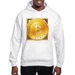 Bitcoins-3 Hooded Sweatshirt