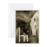 Horse Greeting Greeting Cards (Pk of 10)