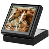 It's Just Me & You Horse Gift Keepsake Box