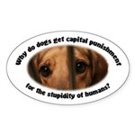 Capital Punishment Sticker (Oval)