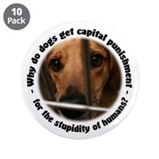 "Capital Punishment 3.5"" Button (10 pack)"