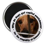 Capital Punishment Magnet
