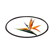 Bird of Paradise Flower Patches