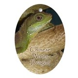 Chinese Water Dragon Oval Ornament