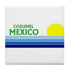 Unique Cozumel Tile Coaster