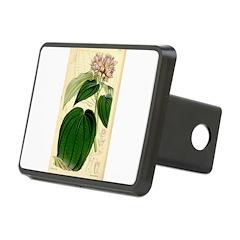 Dancing Pit Bull iPad Case