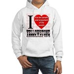 I Love Yellowstone Establishe Hooded Sweatshirt