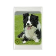 Border Collie 9A015D-10_2 Rectangle Magnet