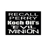 Recall Governor Rick Perry Rectangle Magnet (10 pa