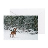 Funny Pharaoh hound Greeting Cards (Pk of 10)