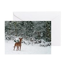 PHHolidayCard Greeting Cards