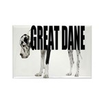 Great Dane Rectangle Magnet (10 pack)