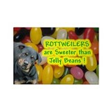 Funny Rottweiler items Rectangle Magnet (10 pack)
