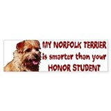 smart Norfolk Bumper Car Sticker