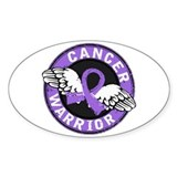 Hodgkin's Lymphoma Warrior Decal