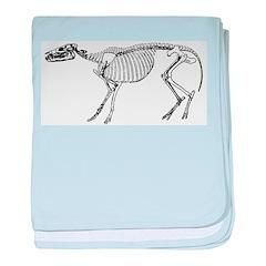 Dinosaur Skeleton baby blanket