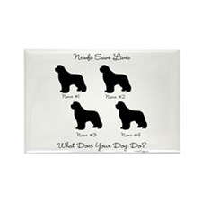 4 Newfoundlands Rectangle Magnet