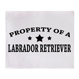 Property of Lab Throw Blanket
