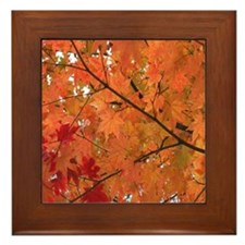 Autumn tint Framed Tile