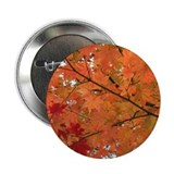 "Autumn tint 2.25"" Button (100 pack)"