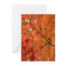Autumn tint Greeting Cards (Pk of 10)