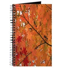 Autumn tint Journal