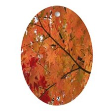 Autumn tint Oval Ornament