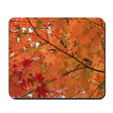 Autumn tint Mousepad