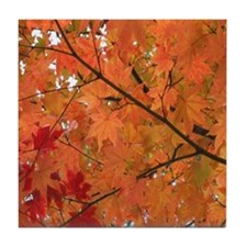 Autumn tint Tile Coaster