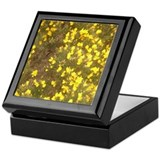 Gorse in Bloom Keepsake Box